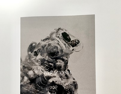 Paracosm Exhibition Booklet