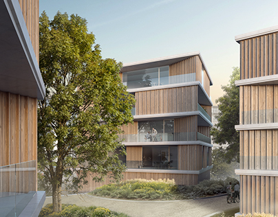 Wooden Co-housing Project - 2017