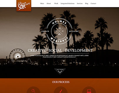 Holmes Moriarty - Website Direction