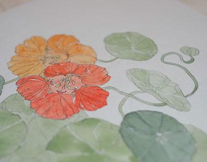Flowering Vines personal series for Bewilder Floral