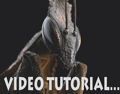 Ghost mantis tutorial