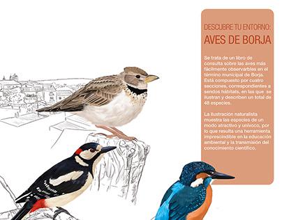 descubre tu entorno: aves de Borja