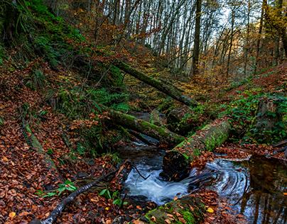 Karlstalschlucht - Karlstal Gorge