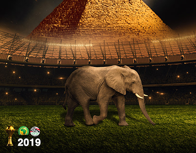 Africa Cup