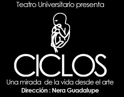 Proyecto Ciclos para Teatro Universitario UNNE