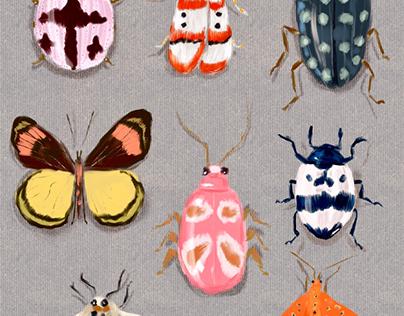 Moths & Beetles  by Christina Gliha