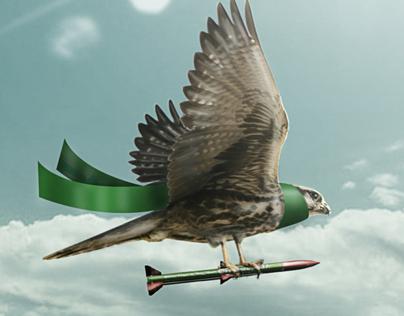 Birds Gaza