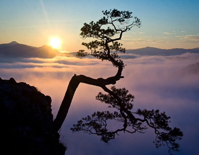Sunrise - Sokolica