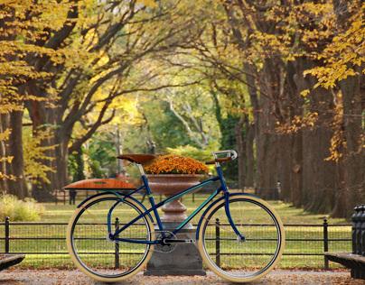 Heritage Bicycle