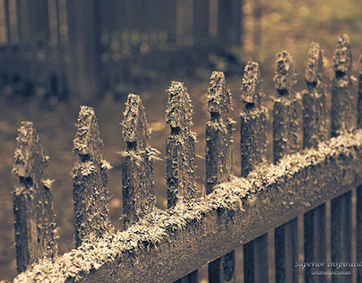 Burial Fence ~ Copper Harbor