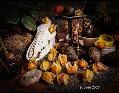 Still life with Physalis and avocados