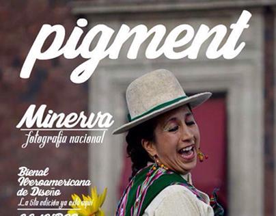 Revista Pigment