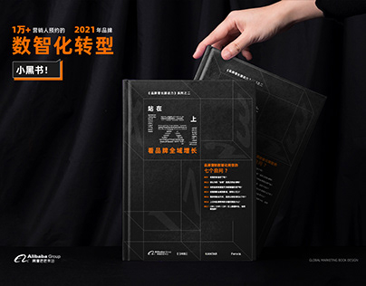 阿里巴巴 品牌增长小黑书