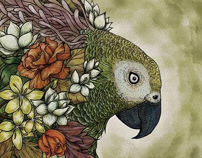 FLOWER & BIRDS + α