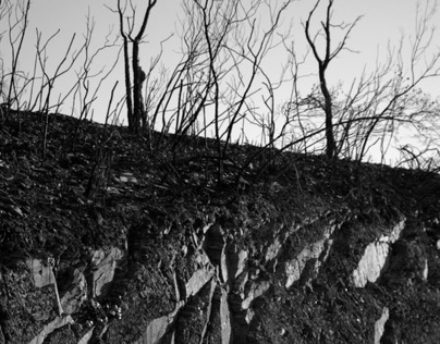 Serra do Caldeirão - o Incêndio e as cinzas