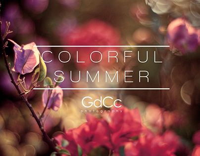 Coluorful Summer