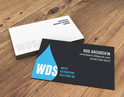 Logo and Business Cards for WDS