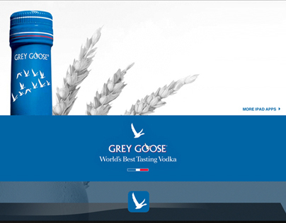 grey goose marketing plan View thibault loizeau's profile on linkedin marketing group manager grey goose - france, italy • design of the fy14 william lawson's marketing plan.