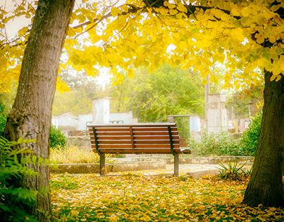 Autumn in Malomirovo Bulgaria