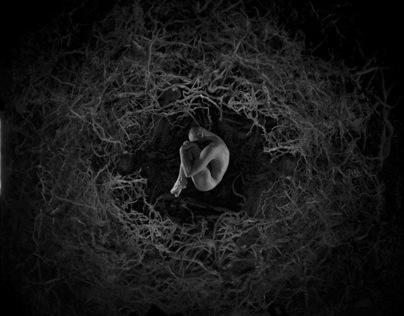 Monteur truquiste - Vidéographiste - Teaser film