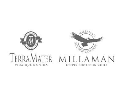 Terramater / Millaman - Sección Premio