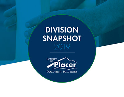 Document Solutions Division Snapshot
