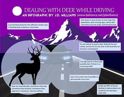 Driving Near Deer Infographic
