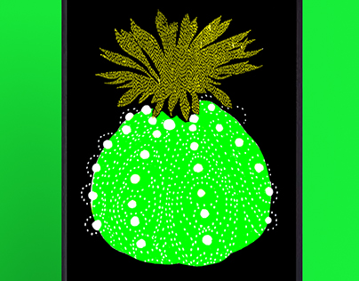 Кактусы   Cactus