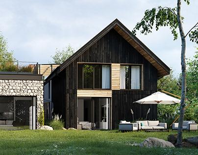 Modern House I