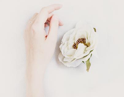 Pure White Concept