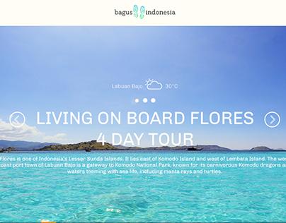 IndonesiaBagus Website Redesign