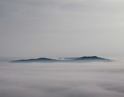 Above the mist