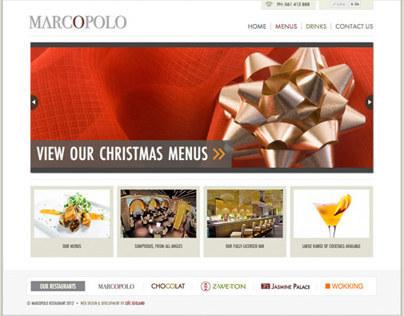 Website Design & Development of Marcopolo.ie