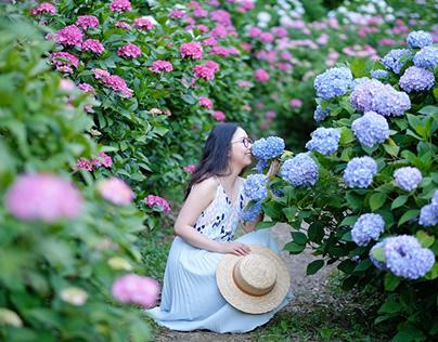 Tháng 6 là mùa gì? Du lịch Mộc Châu tháng 6 có gì đẹp?