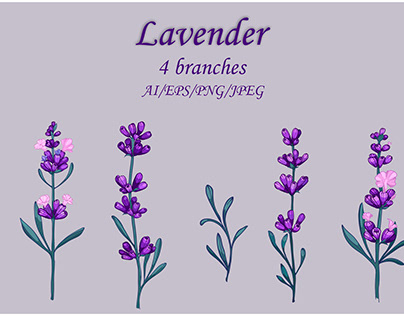 vector Lavender Clipart 4 branches