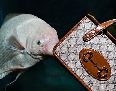 Gucci X Elle Arabia Magazine