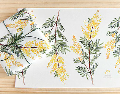 Wrapping Paper mimosa