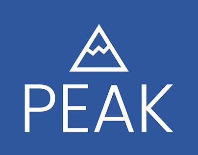Peak Wellness Co. Logo Design