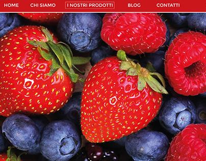 Progettazione homepage template website