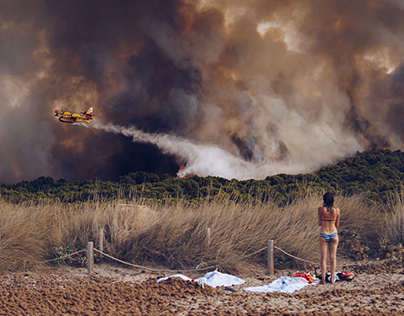 Wildfire at the beach