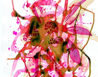 Wet Flowers & Circles