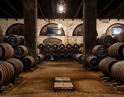 Interior Photography: Alvear's cellar
