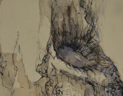 Tree Series- Foundation Drawing