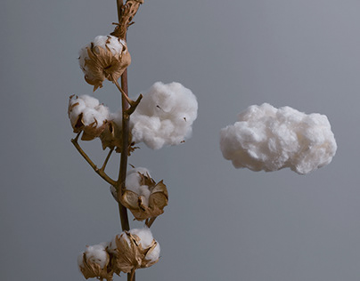 Cotton Clouds | Stop Motion Animation