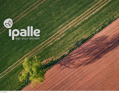 Ipalle - Rebrand V2