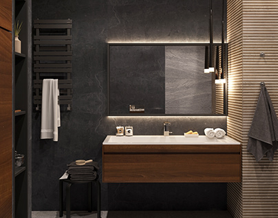 Visualization of the bathroom and shower