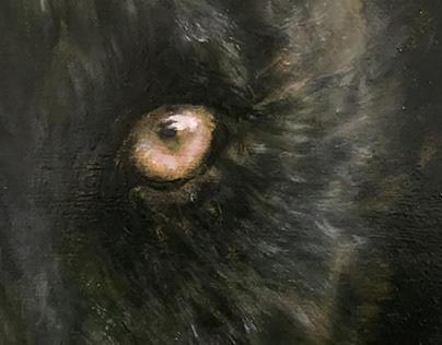 Black Panther Huile sur bois : 80x60cm