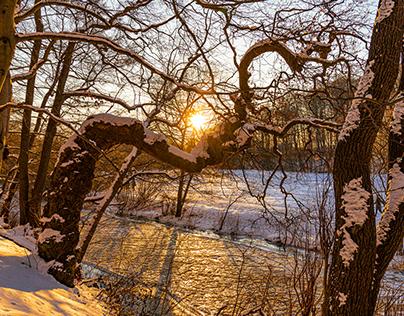 Sunset walk along the creek