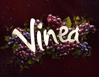Vinea rebrand