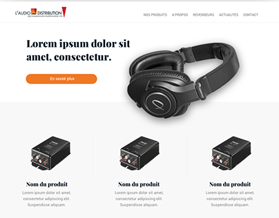 WEBDESIGN FOR AN HIFI DISTRIBUTOR - L'AUDIODISTRIBUTION